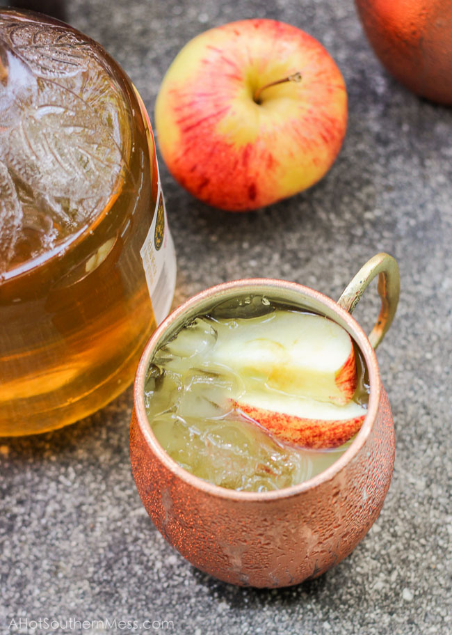 Bourbon is neatly blended with apple cider and orange juice over a mug of ice and raw sugars. Sweet enough to guzzle, stiff enough to sip. A chilled fall drink that's the perfect blend of sweet and manly, perfect as a swift Fall drink in the warm southern states. www.ahotsouthernmess.com