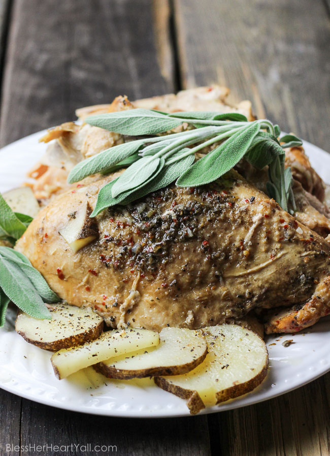 Spicy Sage Slow Cooker Turkey: A combination of sage and garlic combine deliciously with a little heat {only if you want it!} in a slow cooker for the most juicy and moist turkey you will ever eat! 5 minutes of prep work gives you a Thanksgiving Day main meal that is falling-off-the-bone! www.blessherheartyall.com