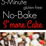 This no-bake s'more cake is a 5 minute recipe that is a fun project for the kids to help with! Grab your s'mores ingredients, and you have a crunchy, gooey, melty, chocolatey dessert in minutes! Sprinkle on your favorite sprinkles, candies, nuts, or fruits for an even more fun finish! www.blessherheartyall.com