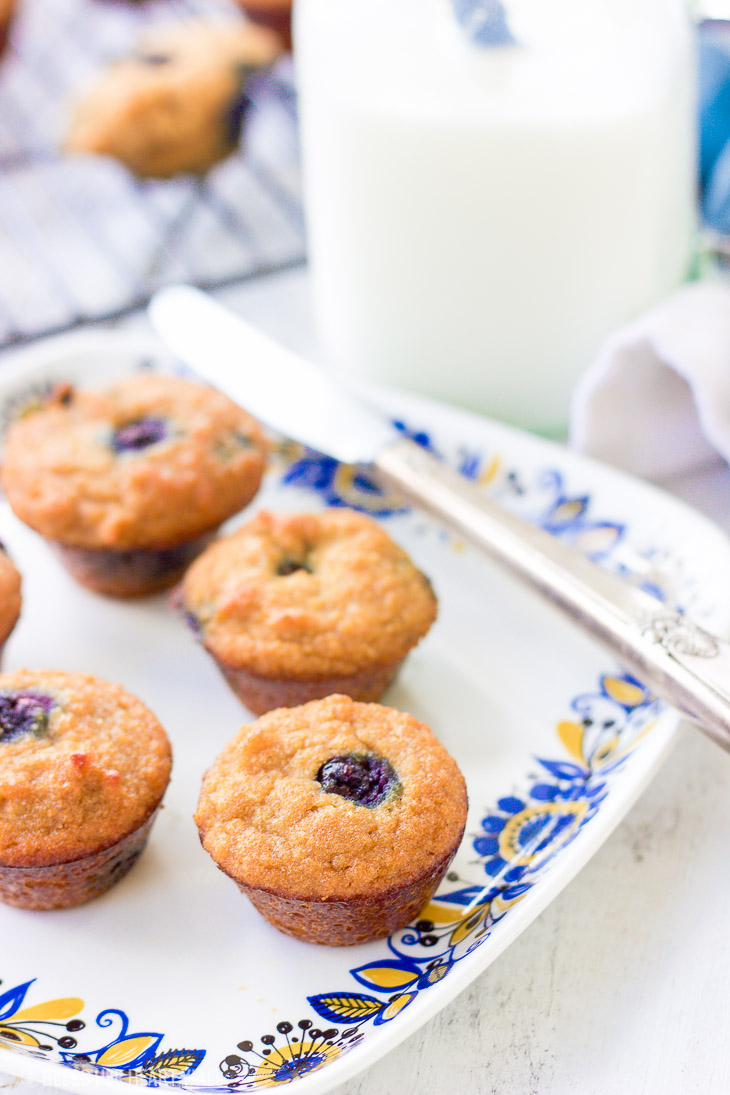 Gluten-Free Blueberry Mini Muffins