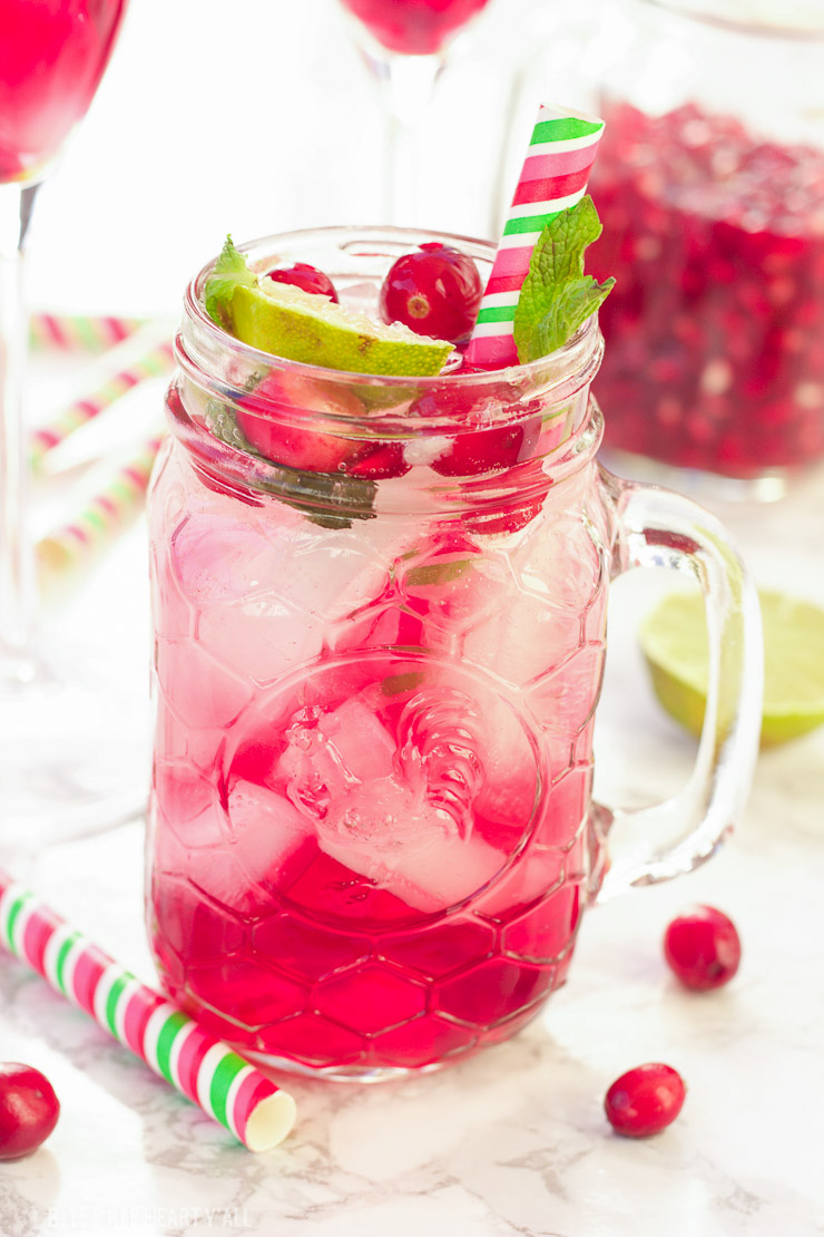 Pomegranate Cranberry Mojito