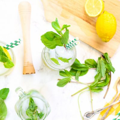 Lemonade Mint Julep