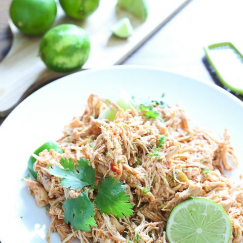 Salsa Lime Chicken