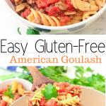 gluten-free spicy goulash